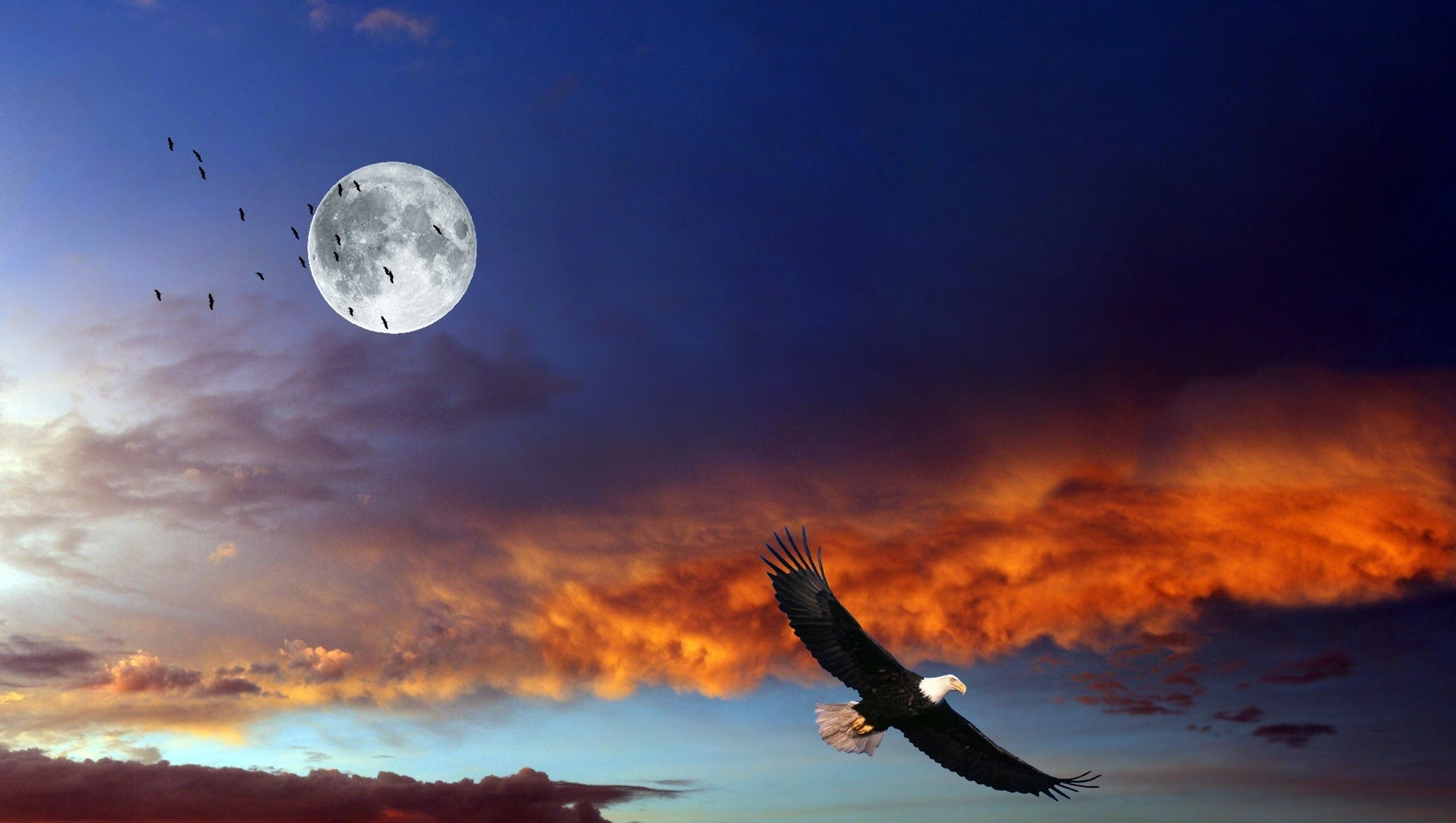 Free stock photo of clouds, eagle, lua, moon