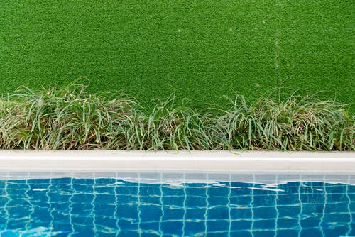クリア, スイミングプール, ヤード, 庭園の無料の写真素材