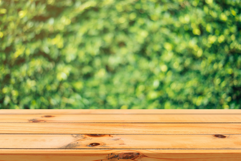 Beau Free Stock Photo Of Wood, Light, Nature, Summer