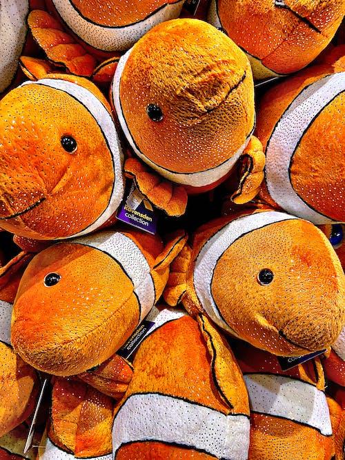 Free stock photo of cartoon character, children toys, Clown fish, fish