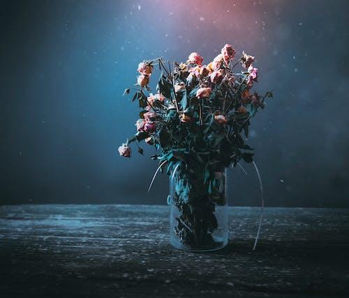 Roses in Flower Vase