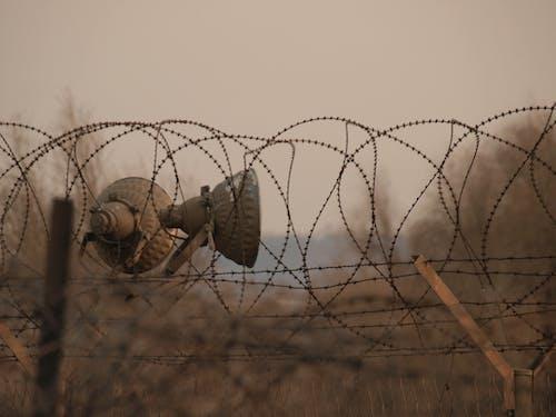 Immagine gratuita di filo spinato, recinzione di ferro