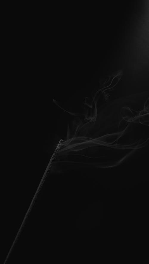 Free stock photo of black, black background, black-and-white