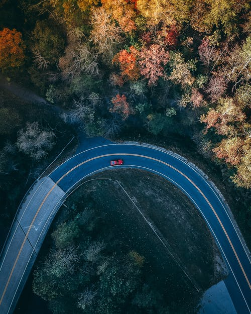 Aerial Photography of Car Driving on Road Between Trees