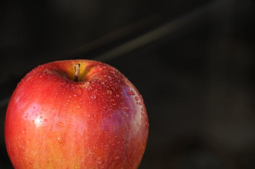 Gratis lagerfoto af Apple, close-up, dråber, dug