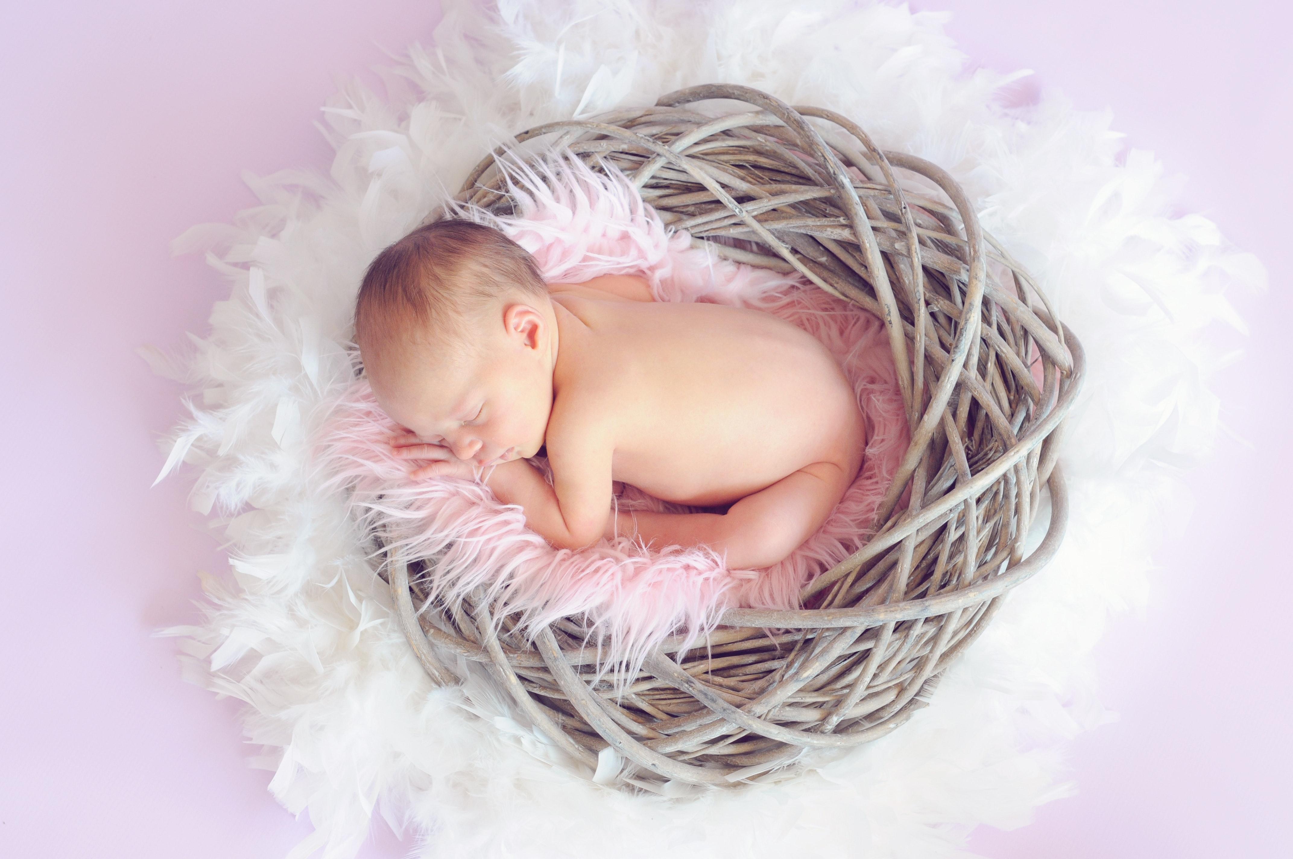 Foto Stok Gratis Tentang Anak Baru Lahir Bayi