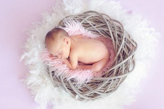 Kostenloses Stock Foto zu mädchen, niedlich, baby, schlafen