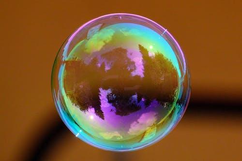 Foto d'estoc gratuïta de arbres, bombolla, bombolla de sabó, colorit