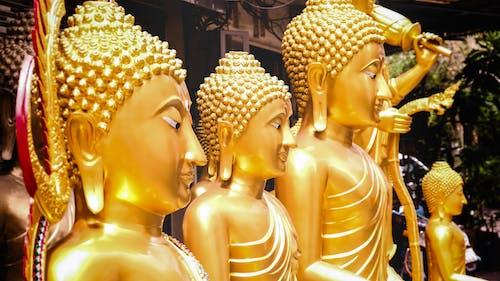 Fotos de stock gratuitas de Asia, Buda, Budismo, estatua