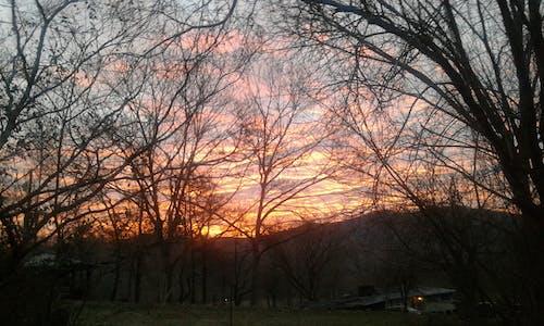 Free stock photo of mountains, sunrise, trees