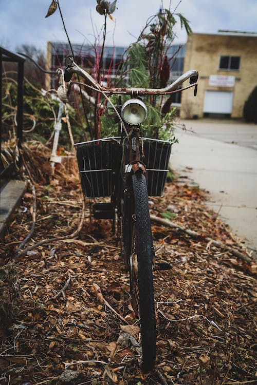 Free stock photo of antique, bicycle