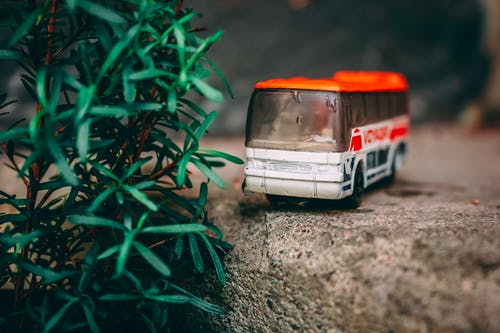 Free stock photo of adventure, bus, cliff, close