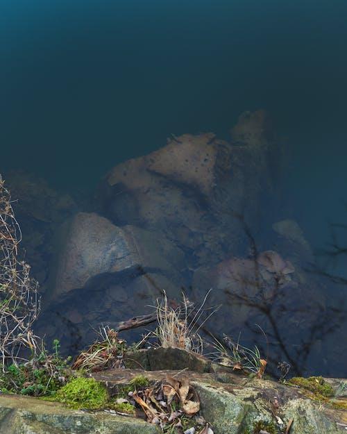 Gratis lagerfoto af alperne, autumfoto, bakker, bjerg