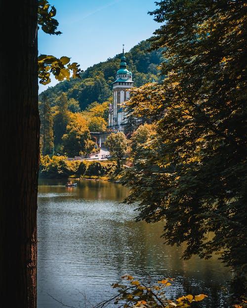 Immagine gratuita di albero, amante della natura, autunno, castello