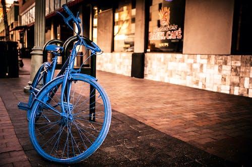 單車騎士, 戶外, 旅行, 日光 的 免費圖庫相片