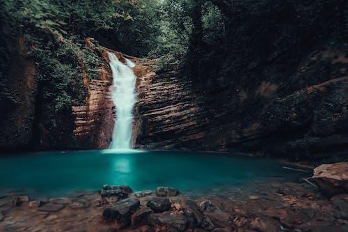 Photos gratuites de arbres, aube, bassin d'eau, cailloux