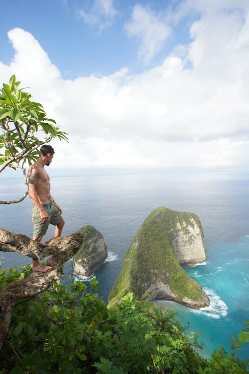 Photos gratuites de arbres, ciel, ciel bleu, côte de falaises