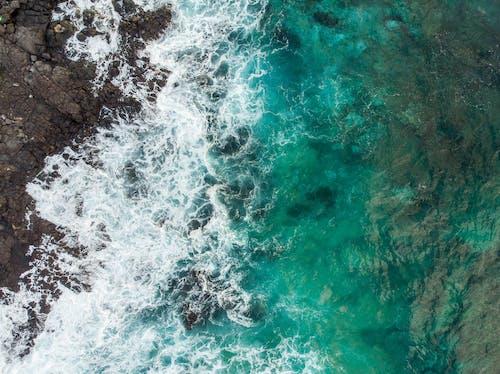 Top View Photo of Rocky Seashore