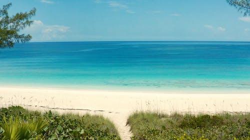 Free stock photo of bahamas, beach, caribbean