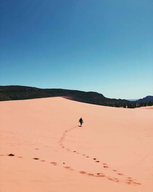 Fotos de stock gratuitas de Desierto, dunas de san, rosa coral, Utah