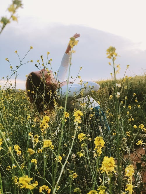 Free stock photo of dancing, field, flowers