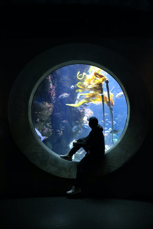 Underwater Window and A Man Sitting Wearing Hat