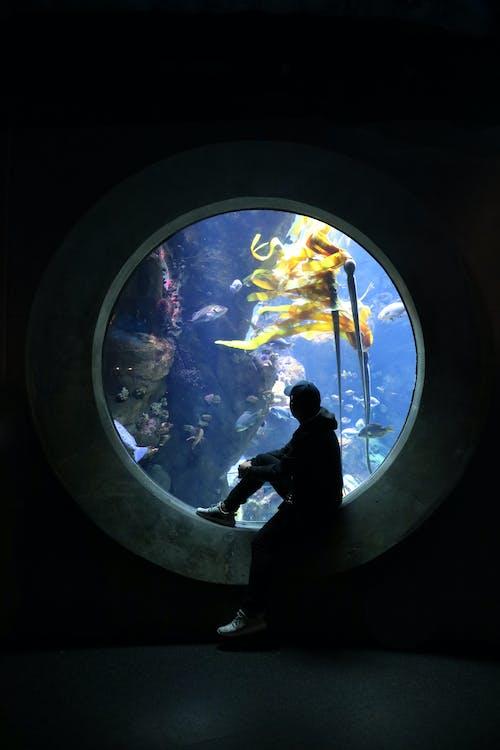 Ventana Submarina Y Un Hombre Sentado Con Sombrero