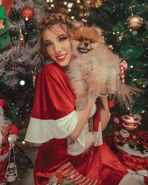 アニマルラバー, きれいな女性, クリスマス, サンタスーツの無料の写真素材