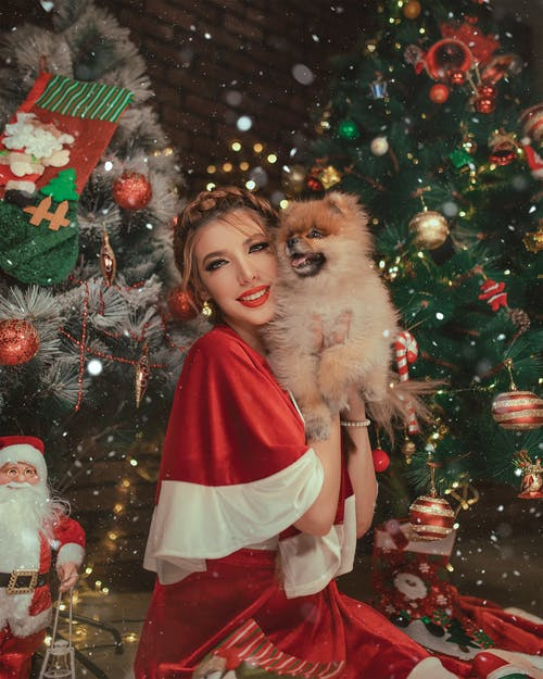 Woman Holding Dog Beside Christmas Tree