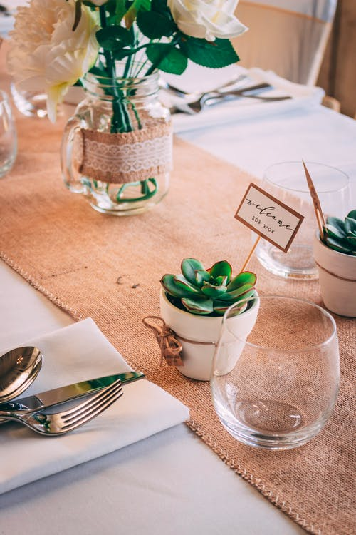 Green Succulent Plant in White Ceramic Pot Beside Stainless Steel Fork and Bread Knife on White Table Napkin