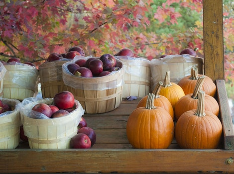 Free stock photo of vegetables, trees, fruits, leaves