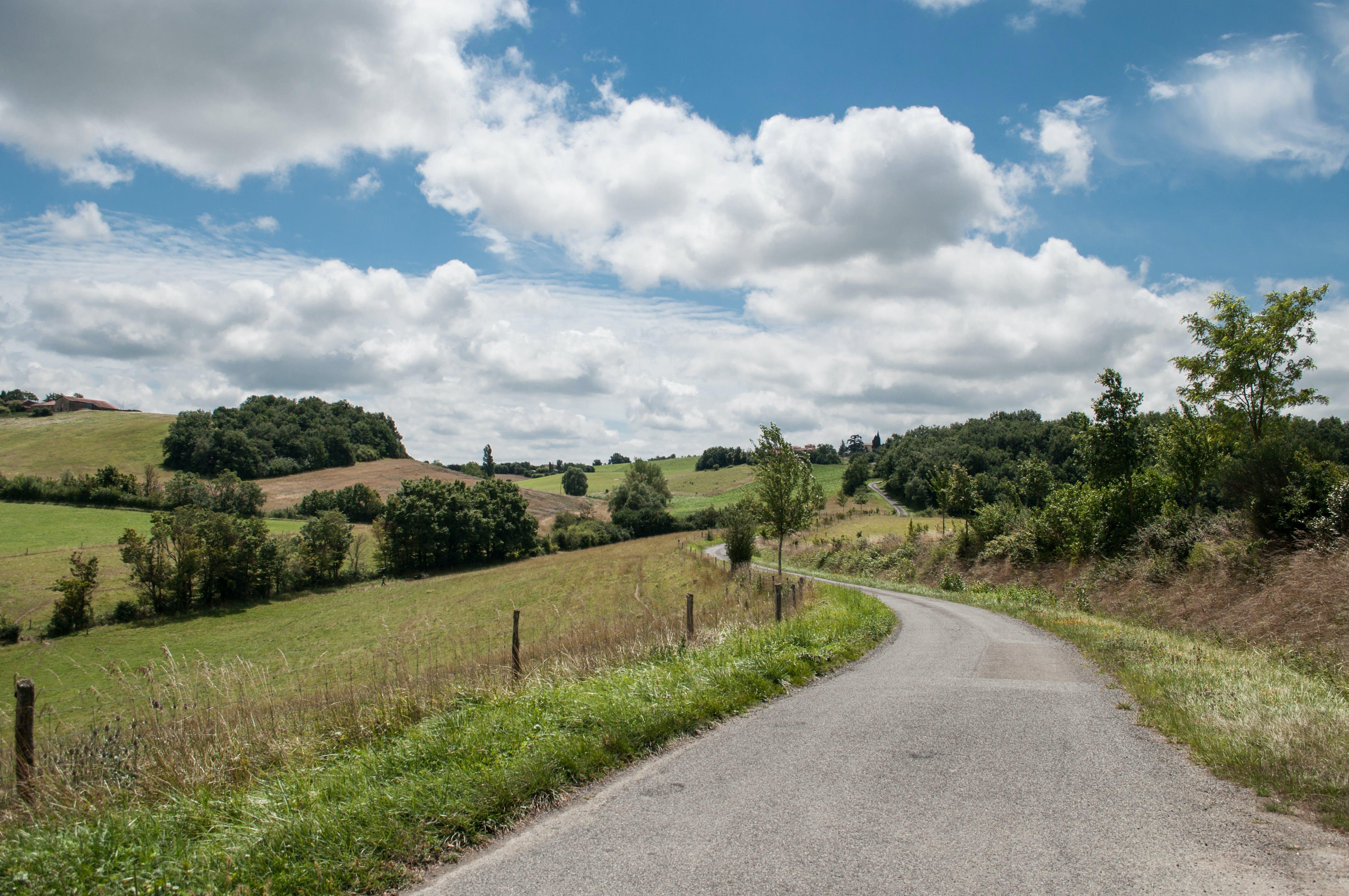 Asphalt Road Between Green Grass