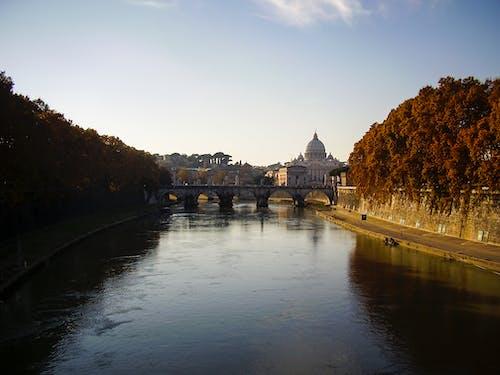 台伯河, 圣彼得, 圣彼得广场, 城市 的 免费素材照片