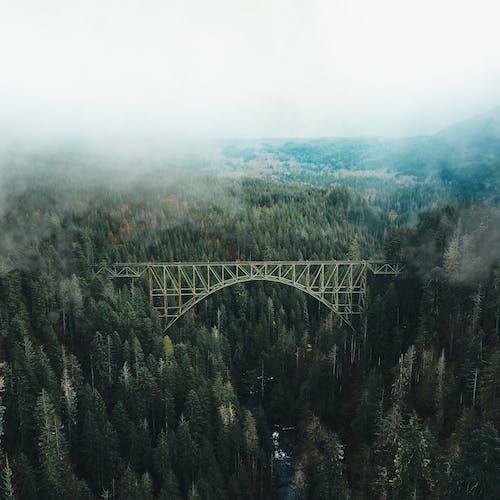 Foto De Puente Bajo Nubes Blancas