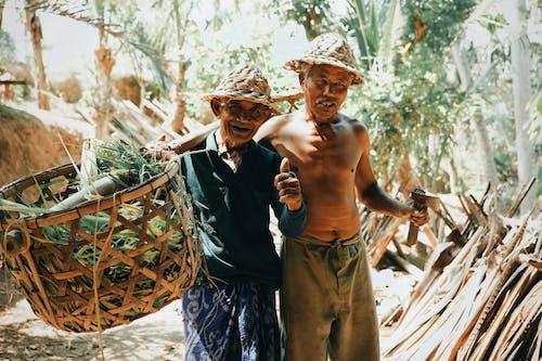 Fotos de stock gratuitas de agricultura, alegre, aprobar