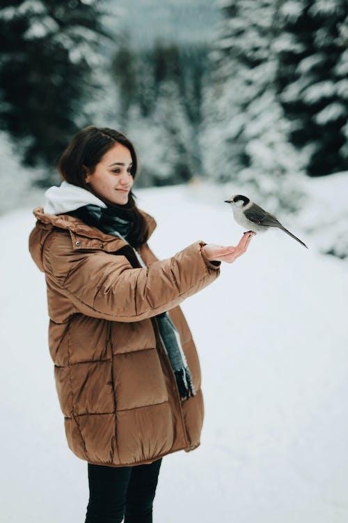 Woman Wearing Brown Coat While Holding Bird