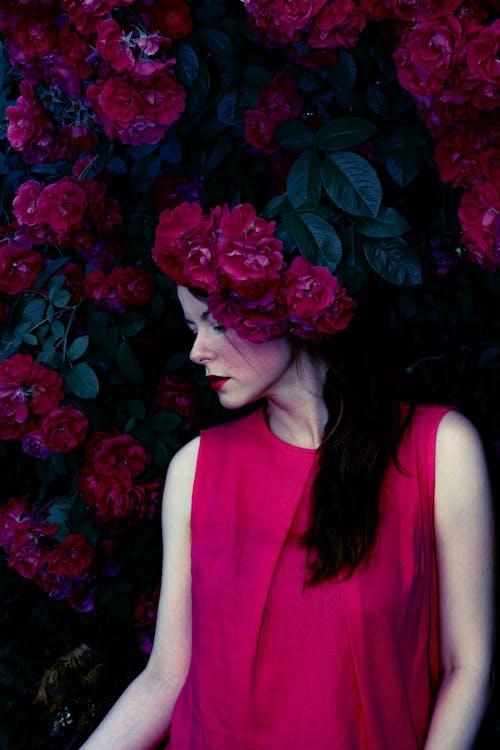 Foto stok gratis anggun, bagus, berbunga, bunga-bunga