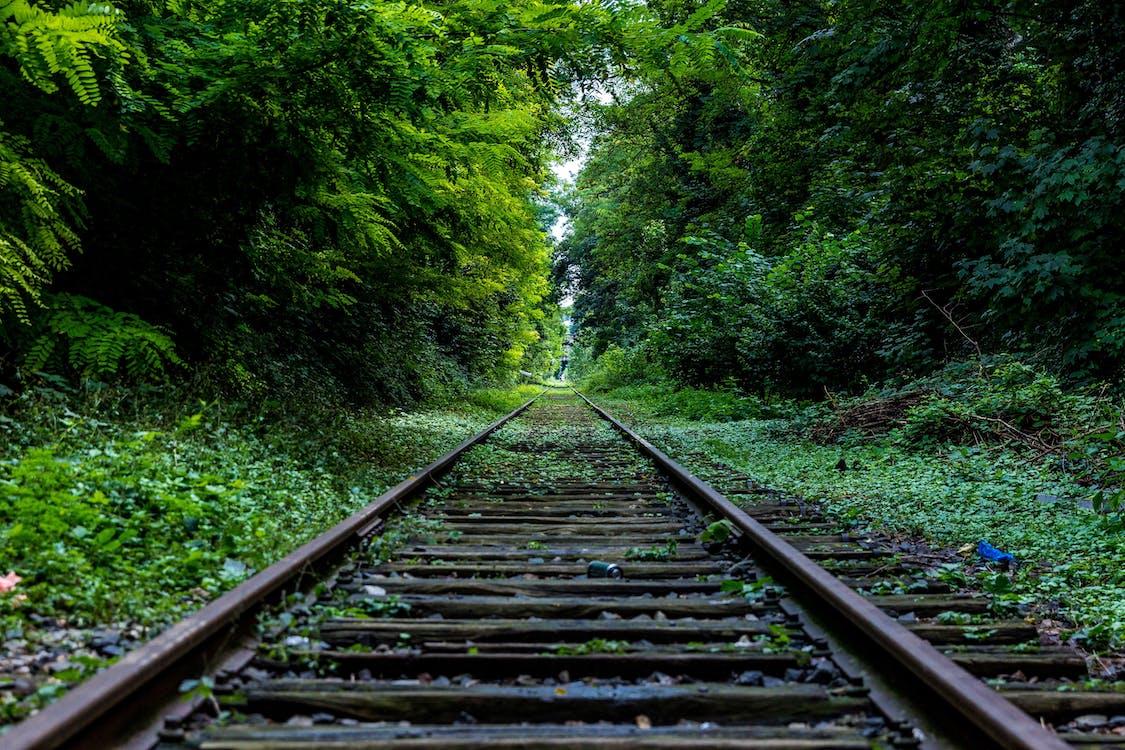 azman, çok büyümüş, demir yolu