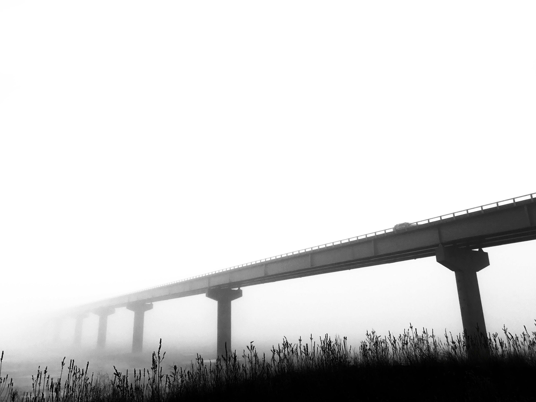 Free stock photo of black and white, bridge, fog