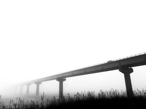 Foto stok gratis hitam dan putih, jembatan, kabut