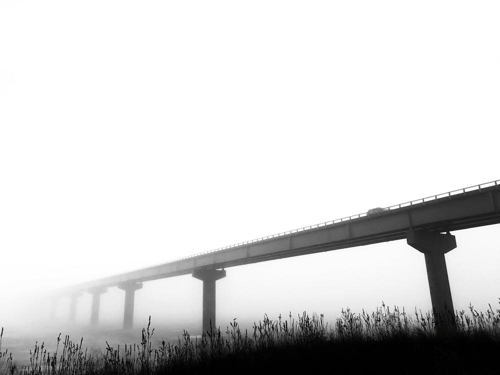 bro, sort og hvid, t¨åge