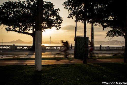 Kostenloses Stock Foto zu goldene sonne, motorradfahrer, radfahrer, sonnenuntergang
