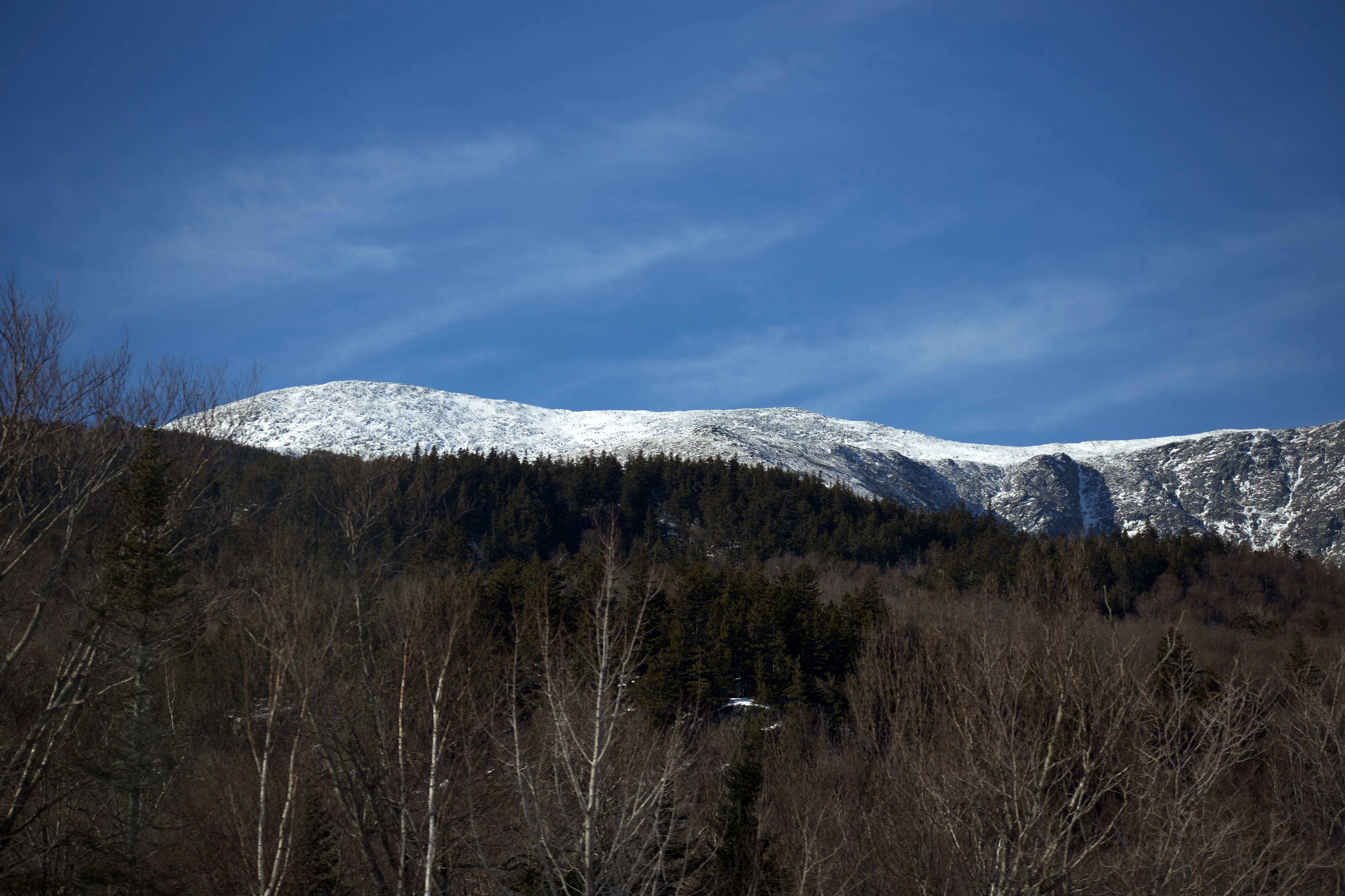 冬季, 山, 景觀, 森林 的 免费素材照片