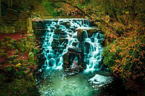 Gratis stockfoto met dji mavic pro, drone fotografie, Engeland, virginia water
