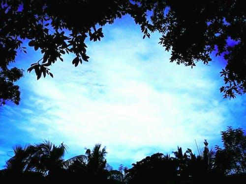 Free stock photo of beautiful sky, blue sky, bluesky