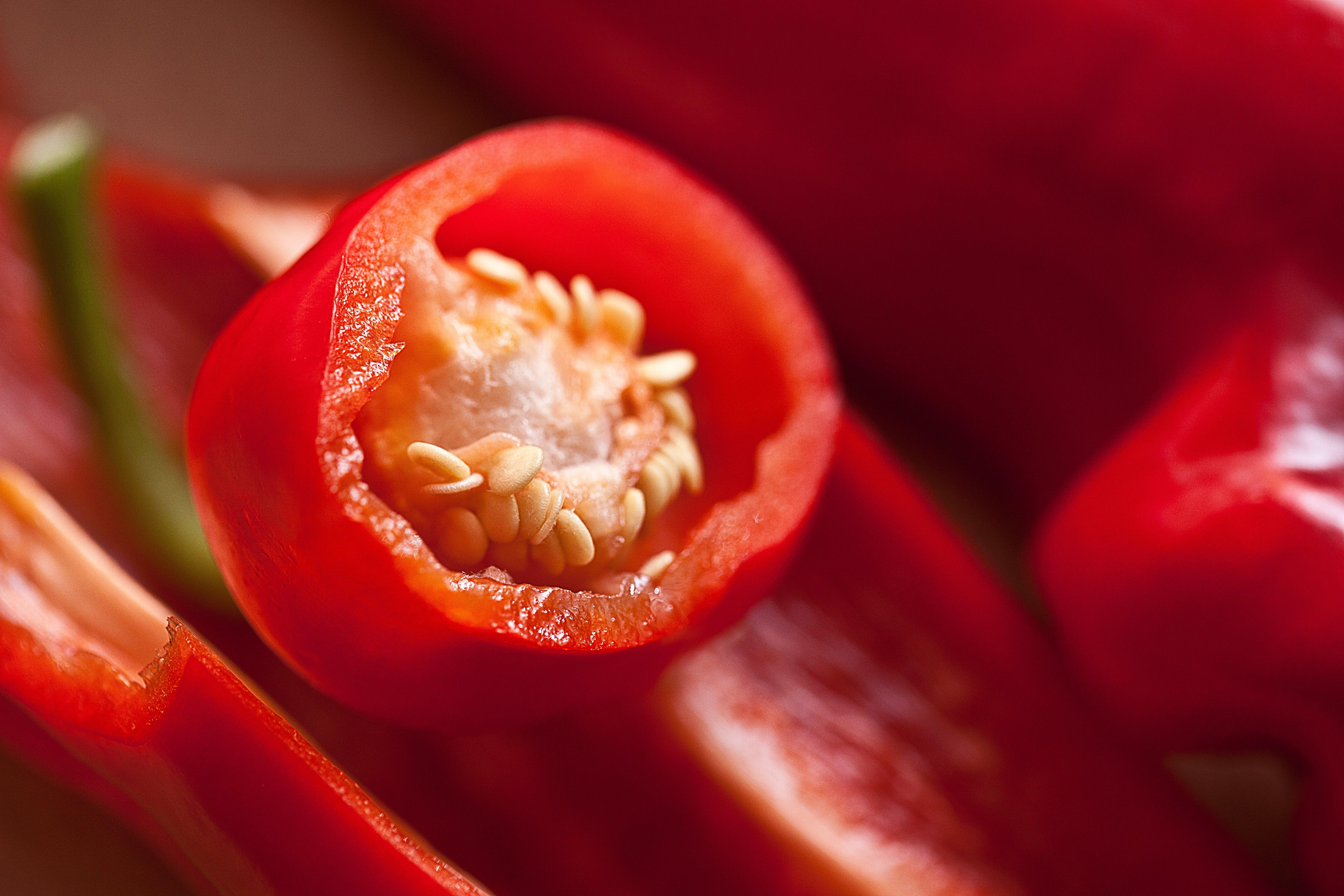 Red Chili Macro Photography