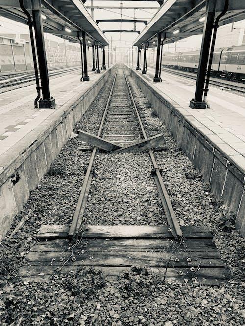 คลังภาพถ่ายฟรี ของ ทางรถไฟ, ฝึก, รางรถไฟ, สถานีรถไฟ