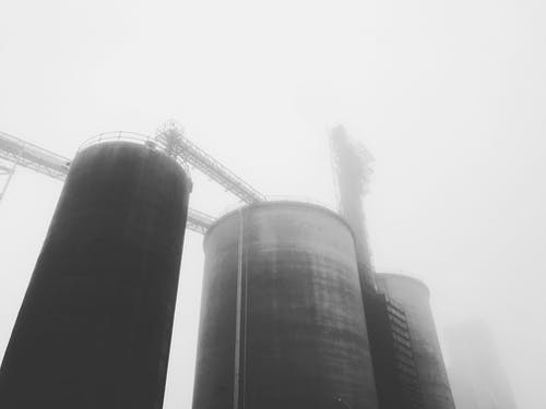 Free stock photo of black and white, farm, fog