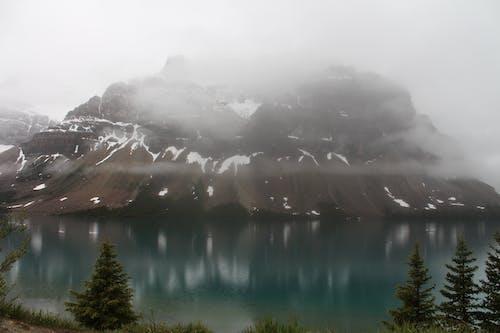 국립공원, 밴프, 안개 낀, 자연의 무료 스톡 사진