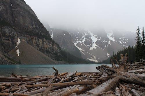 국립공원, 밴프, 비, 산의 무료 스톡 사진